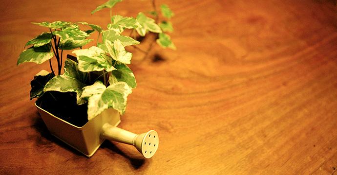 木ダボを使って綺麗にネジやビスを隠す方法。お試しあれ!